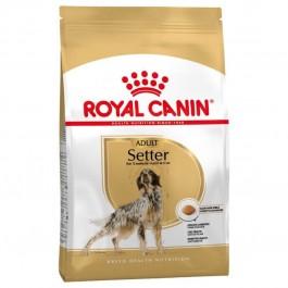 Royal Canin Chien Setter Adult 12 kg - La Compagnie Des Animaux