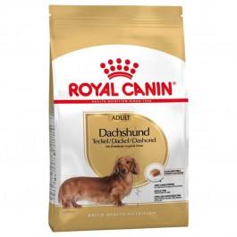 Royal Canin Teckel Adult 1.5 kg - La Compagnie Des Animaux