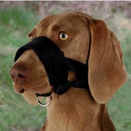 Trixie muselière sangle nylon avec doublure souple pour chien XL - La Compagnie Des Animaux