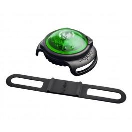Orbiloc collier lumineux vert pour chien - La Compagnie Des Animaux