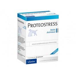 Wamine Proteostress 36 cps - La Compagnie Des Animaux