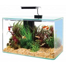 Zolux Aquarium Aqua Clear 40 noir - La Compagnie des Animaux