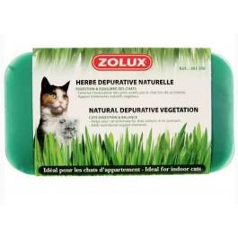 Zolux Herbe dépurative naturelle pour chat 250 g - La Compagnie Des Animaux