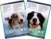 Capstar 11.4 mg pour chat et petit chien
