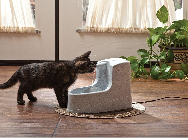 Bruit Griffe Chien Parquet offre pet safe fontaine mini drinkwell 1.2 l
