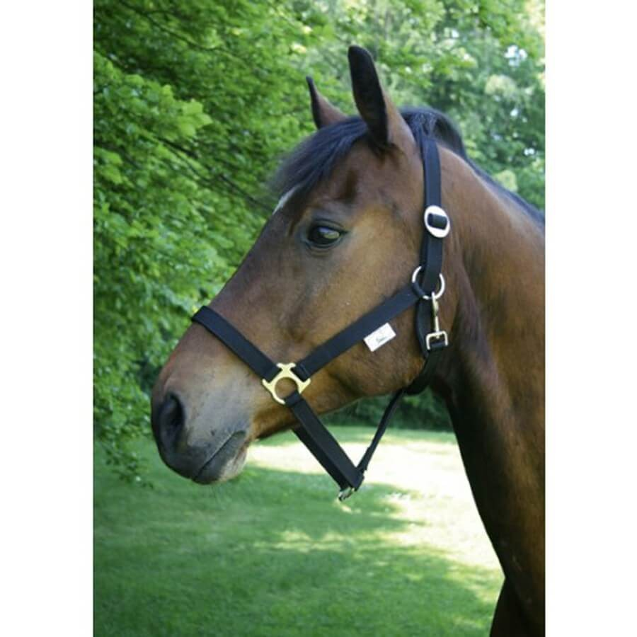 Licol Taille 1 - Poney