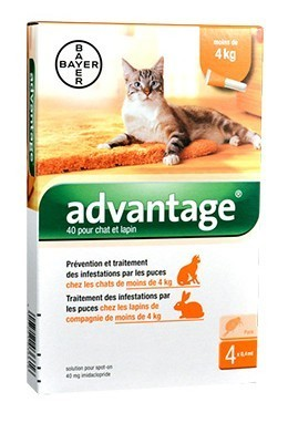 Advantage 40 chat et lapin de 1 à 4 kg - 4 pipettes