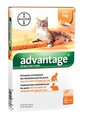 Advantage 40 chat et lapin de 1 à 4 kg - 6 pipettes