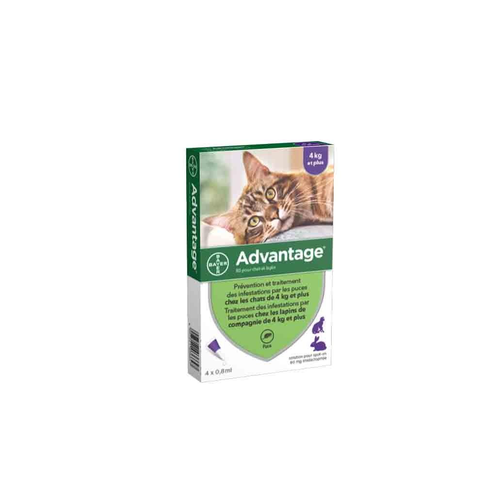 Advantage 80 chat et lapin de plus de 4 kg - 4 pipettes- La Compagnie des Animaux