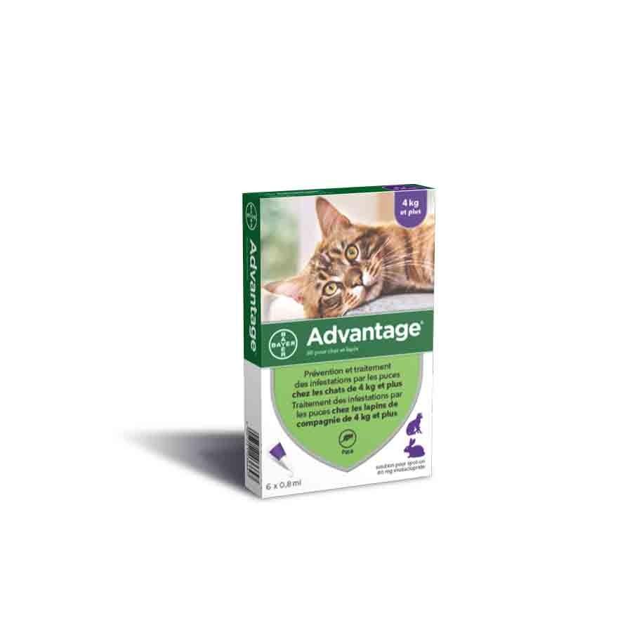 Advantage 80 chat et lapin de plus de 4 kg - 6 pipettes- La Compagnie des Animaux