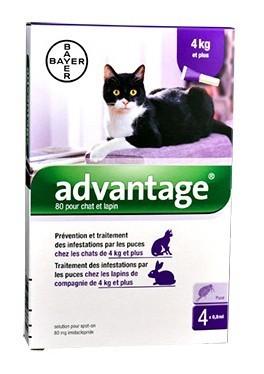 Advantage 80 chat et lapin de plus de 4 kg - 4 pipettes