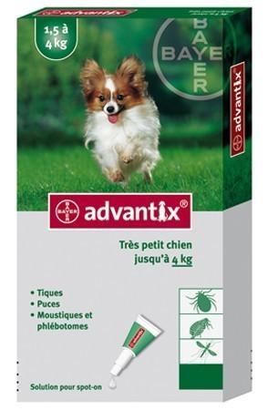 Advantix très petit chien (1,5-4 kg) - 6 pipettes