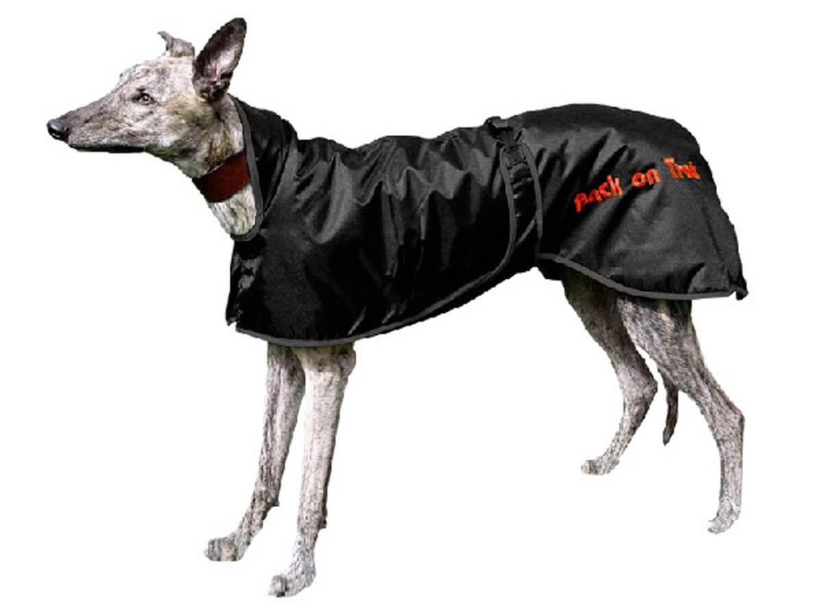 Manteau Back On Track lévrier Greyhound