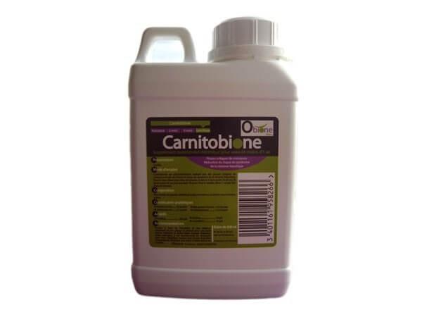 Carnitobione 5 L
