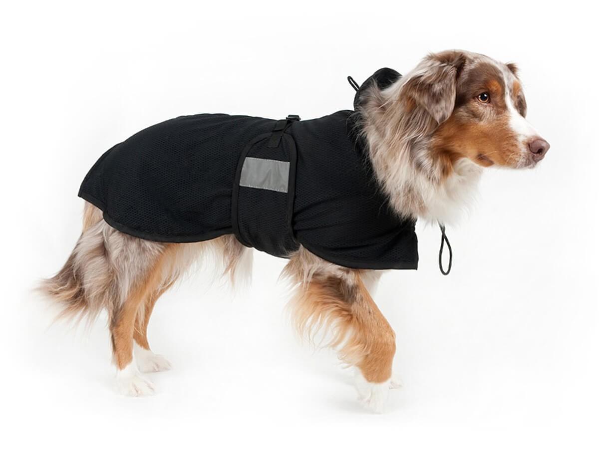 Manteau Filet Back On Track pour chien