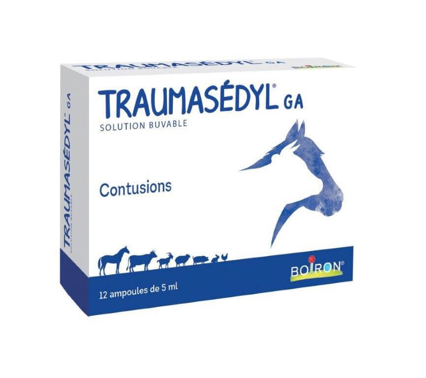 Traumasedyl GA 12x5ml