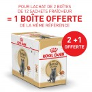 Offre Royal Canin British Shorthair Adult 24 sachets + 12 offerts