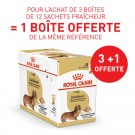 Offre Royal Canin Teckel Adult mousse 36 sachets + 12 offerts