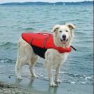 Trixie Gilet de Flottaison pour chien rouge M