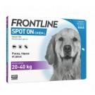 Frontline Spot on chien de 20-40 kg 6 pipettes- La Compagnie des Animaux