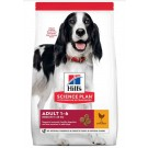 Hill's Science Plan Canine Adult Medium Advanced Fitness poulet 12 kg- La Compagnie des Animaux