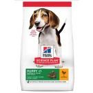 Hill's Science Plan Puppy Medium Healthy Development agneau et riz 12 kg