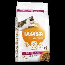 IAMS Vitality croquettes chat senior poulet - La Compagnie des Animaux