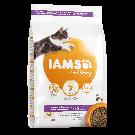 IAMS Vitality croquettes pour chaton au poulet - La Compagnie des Animaux
