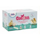 Plume & Compagnie Cocokit Poussin