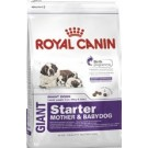Royal Canin Giant Starter Mother and Babydog 15 kg