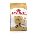 Royal Canin Berger Allemand Adult 5+ 12 kg