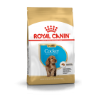 Royal Canin Cocker Junior - La Compagnie des Animaux
