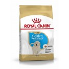 Royal Canin Golden Retriever Junior - La Compagnie des Animaux
