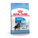 Royal Canin Maxi Junior 10 kg- La Compagnie des Animaux