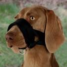 Trixie muselière sangle nylon avec doublure souple pour chien XL- La Compagnie des Animaux