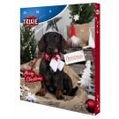 Trixie Nouveau Calendrier de l'Avent pour chien 2018- La Compagnie des Animaux