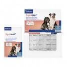 Virbac HYALORAL pour chien 360 cps- La Compagnie des Animaux