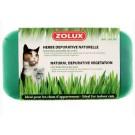 Zolux Herbe depurative naturelle pour chat 250 g - La Compagnie des Animaux
