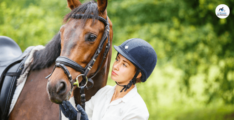 Comment aborder un cheval ?