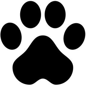 Conseils Vétérinaires