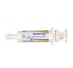 Boosty Gut