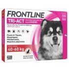 Frontline Tri Act spot on chiens 40 - 60 kg 6 pipettes- La Compagnie des Animaux