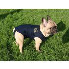 Medical Pet Shirt Chien XS