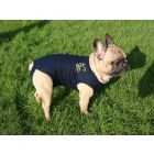 Medical Pet Shirt Chien S Plus