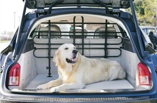 zolux grille universelle voiture se d placer en voiture avec son chien. Black Bedroom Furniture Sets. Home Design Ideas