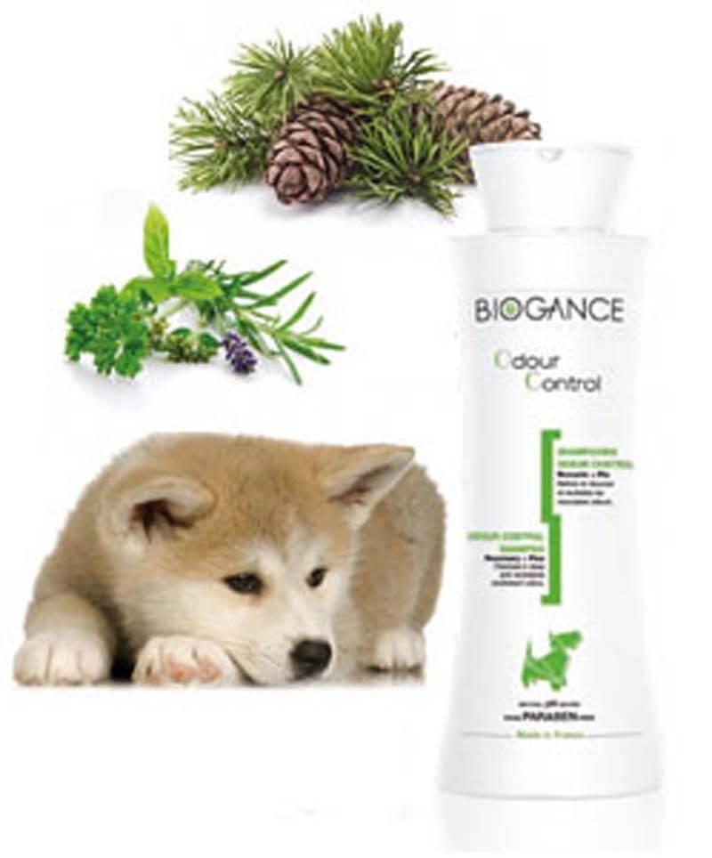 biogance shampooing contre odeur pour chien et chiot 250 ml shampooings entretien peau et. Black Bedroom Furniture Sets. Home Design Ideas