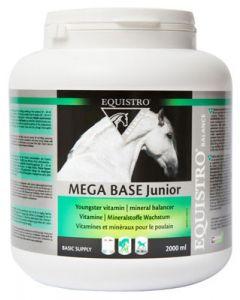 Equistro Mega Base Junior 1 L