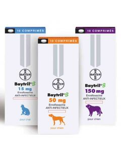 Baytril S Chien 150mg