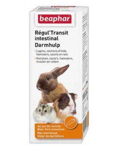 Beaphar Régul'transit solution hygiène digestive pour rongeur 100 ml- La Compagnie des Animaux