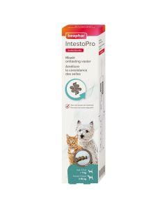 Beaphar IntestoPro Pâte pour Chats et Petits Chiens < 15 kg 20 ml